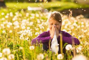 Bayer Allergy Post