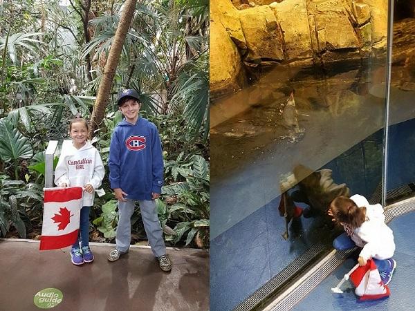 Kids Montreal Biodome