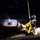 Medieval Times Toronto Knights