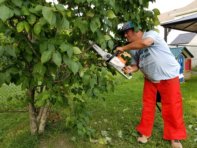 STIHL Neighbour Helper