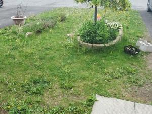 Crappy Lawn 2